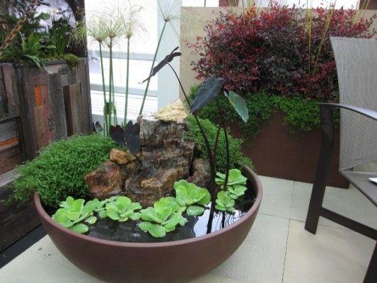 Cute idea. A mini water garden. I love it!!!