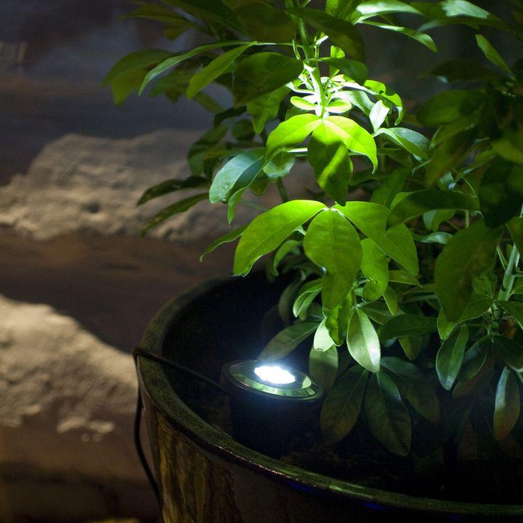 2 White LED Solar Spot Lights