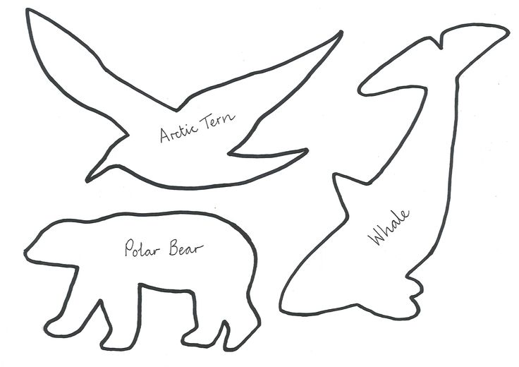 Arctic animal templates polar bear tern whale