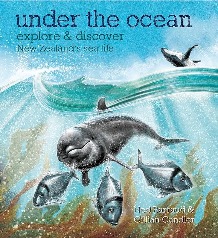 "Cover from ""Under the Ocean"" finalist in the NZ children's book awards. http://www.nedbarraud.com/"