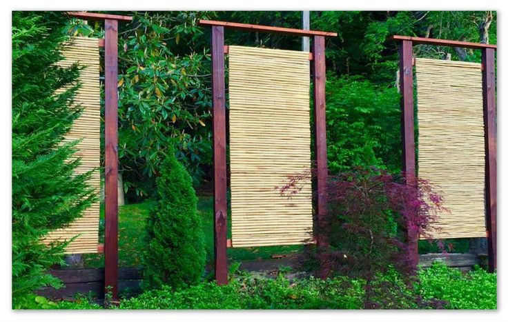 17 Best Images About Bamboo Diy On Pinterest Bamboo