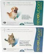 Revolution! Flea and heartworm prevention for dogs and cats. Applied topically once a month.