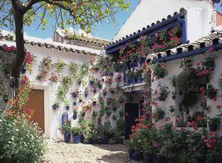 individuele reis Andalusië | SRC-individueel | SRC-reizen.nl