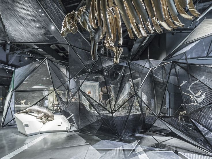 Visitors and prehistoric creatures meet face to face at a French museum by Coop Himmelb(l)au - News - Frameweb