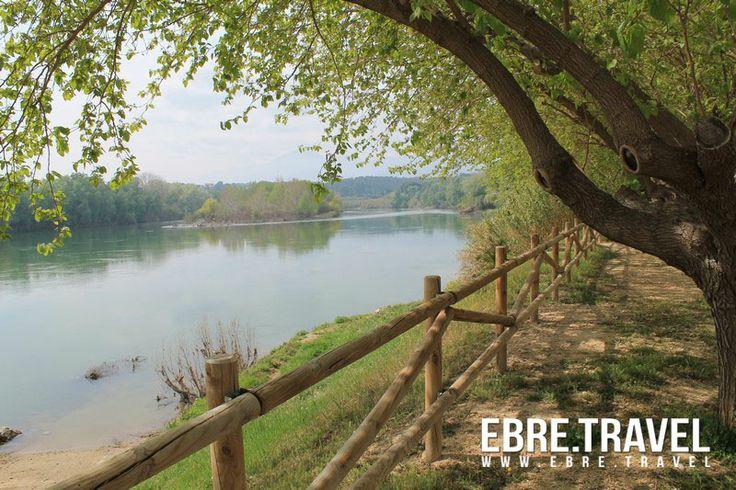 Fresh shadows on the river bank. #TerresdelEbre Sombras frescas en la orilla del rio. #TerresdelEbre Ombres fresques a la vora del riu. #TerresdelEbre