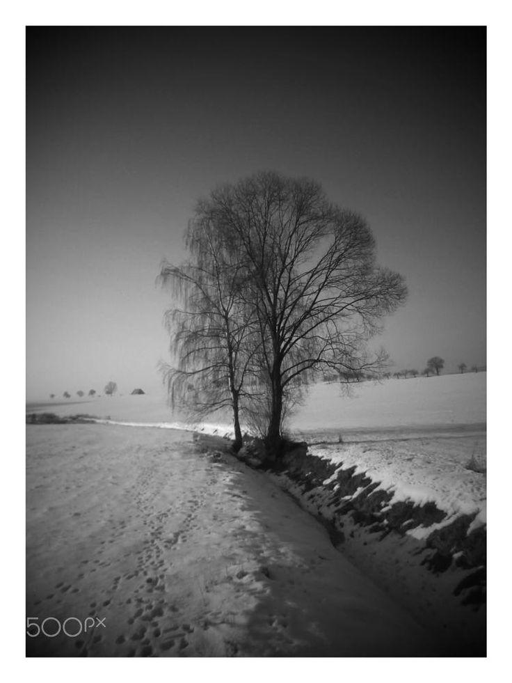 winter mood by Library Chrášťany on 500px