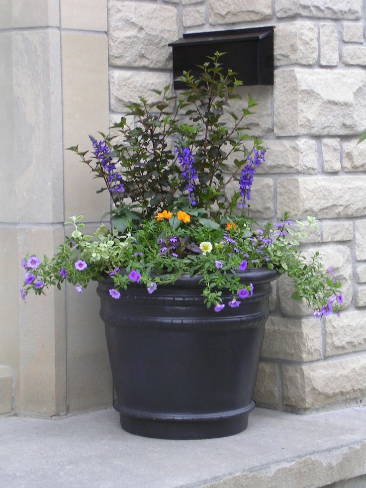 Nice Flowers In Front Entrance Planter.