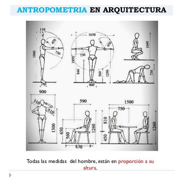 Mejores 43 im genes de arq ergonom a dimensiones en for Antropometria libro
