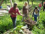 Co je to sociální zemědělství