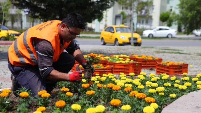 06.Başkent Haber: Ankara Yenimahalle'de Mezarlıklar ve Parklar Temiz...