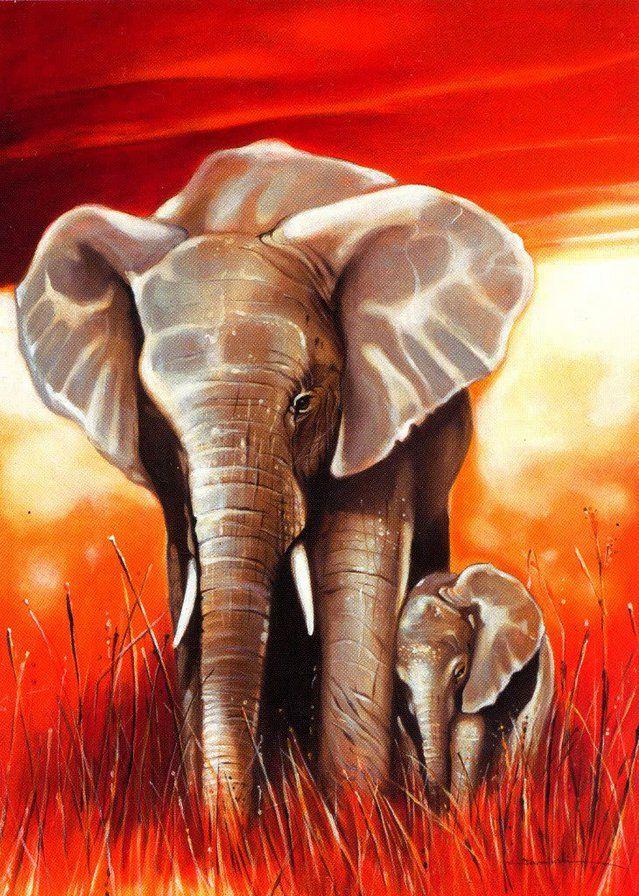 Открытки со слонами