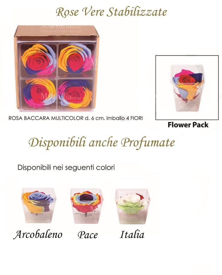 In promozione. Rose Piccole Stabilizzate Multicolor, disponibili anche profumate, 3 diversi colori: pace,  italia o arcobaleno. Rose che mantengono la loro bellezza e il loro inebriante profumo inalterati nel tempo