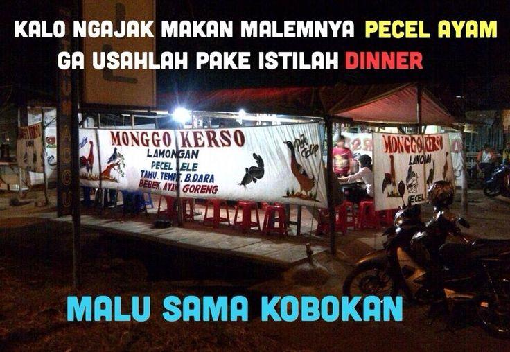 Ini yang namanya dinner? - #Meme - http://wp.me/p3MK7L-bAn