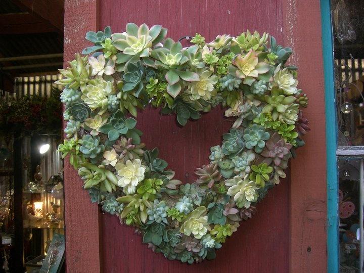 valentine flowers sydney