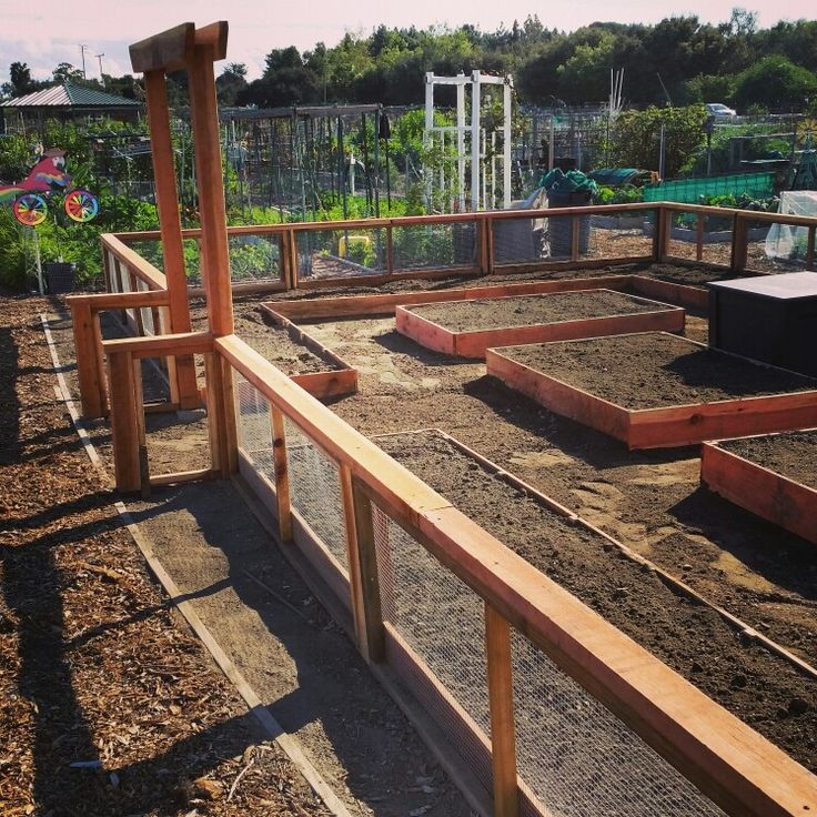 My community garden plot. Fence & beds completed.