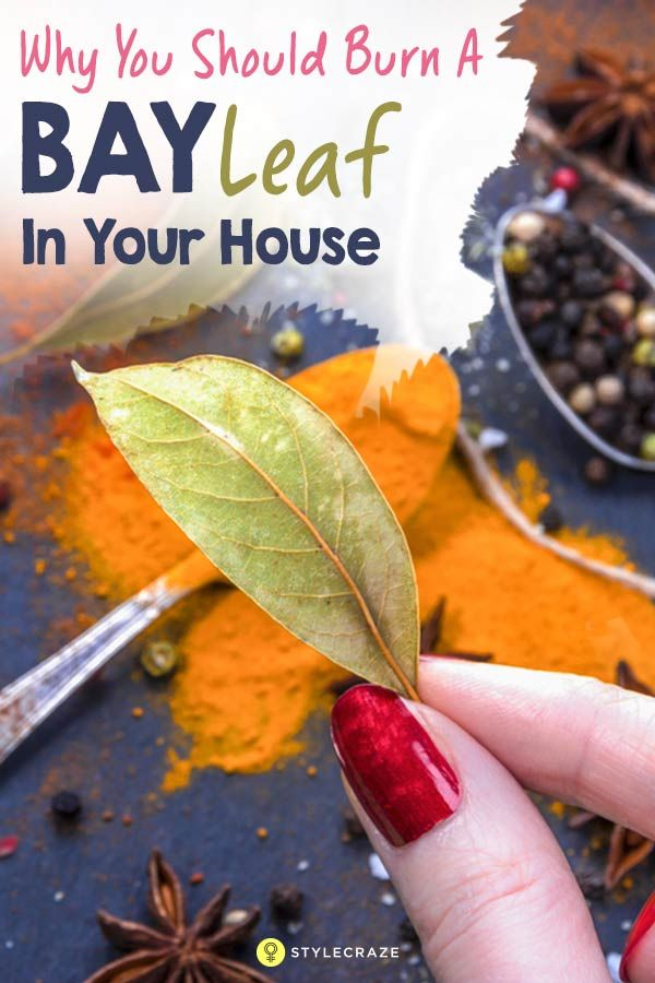Burn a Bay Leaf in Your House. The Reason? You'll be ...
