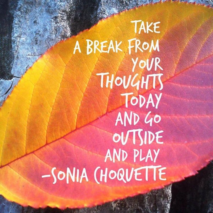 """Take a break from your thought today and go outside and play. Seriously, """"outside"""" is good for everyone and for your very soul. Remember to get out of your house especially if you live alone. Loneliness is terrible at the Holidays. Enjoy your life."""