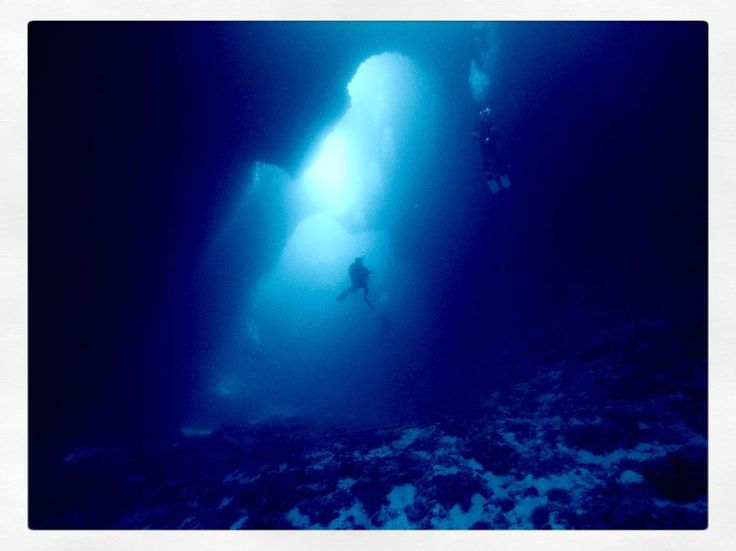 One from yesterday in Palau. The Blue Hole dive site where a 6ft Giant Barracuda resides. #diving