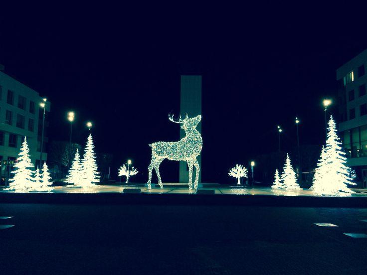 #bratislava#christmas