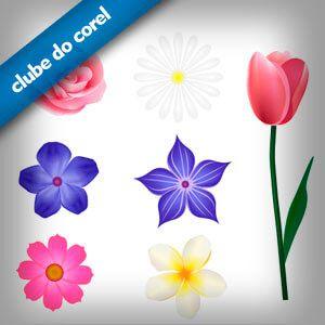 Modelos Flores Vetorizadas | Clube do Corel