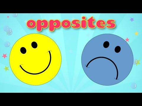▶ Learn Opposites - Fun and Educational Videos for Kids - YouTube