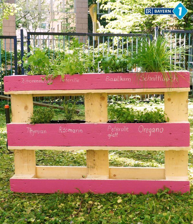 Der Paletten Trick Dieses Krauterbeet Passt Auf Jeden Balkon 2019 Paletten Diy Ein Vertikales Krauterbe Diy Garden Projects Pallets Garden Garden Projects