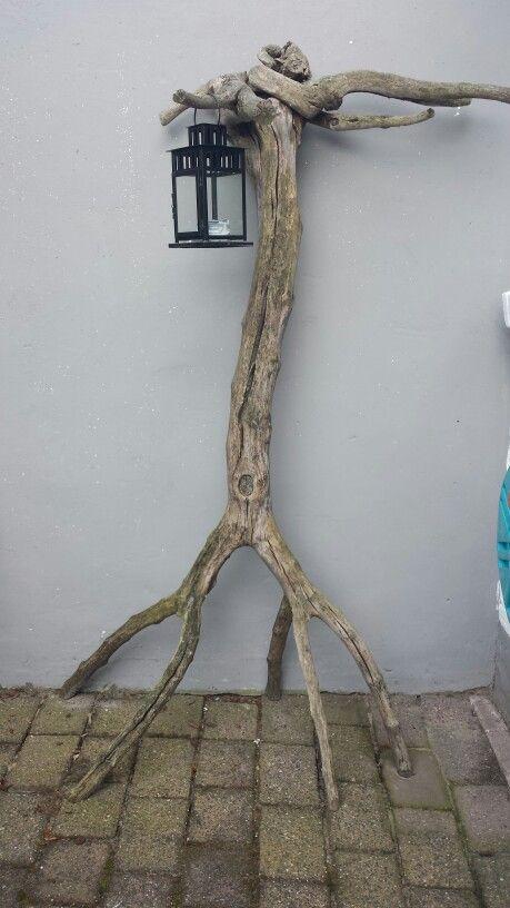 Onze kapstok,  zelfgemaakt van oude moerbei boom. Staat op zijn kop. Wortels boven.