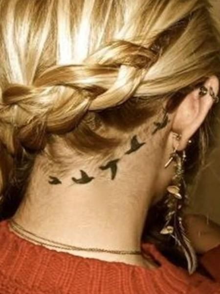 Vögel hinter dem Ohr