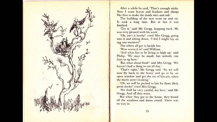 The Magic Finger by Roald Dahl, 26:22, Read by CoyoteLion