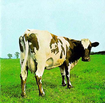 Pink Floyd - Atom Heart Mother by Storm Thorgerson   Hipgnosis