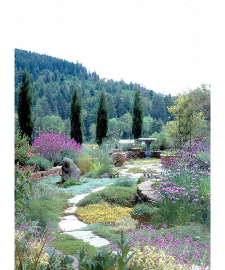 Mediterranean Style Gardens: Jaw-Dropping Gardens On Pinterest