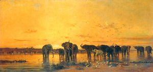 African Elephants  Charles de Tournemine