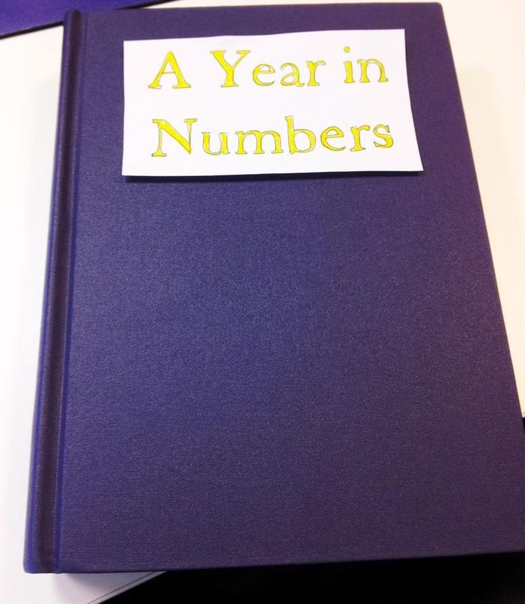 Our homemade book of stats!
