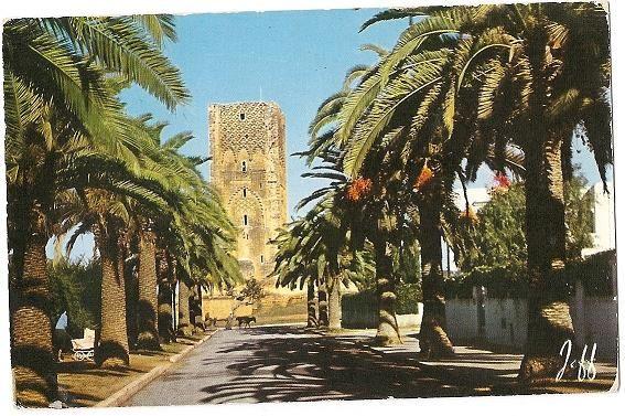 rue des mérinides, années 50...rabat, maroc