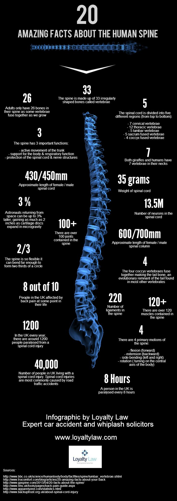 The human spine is an incredible part of the human body. This infographic takes a closer look at this the facts and figures behind the spine.
