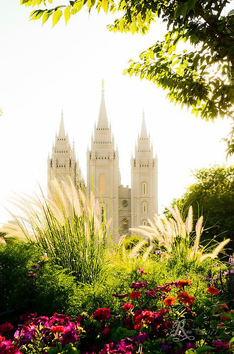 For 10.00 off use the code YSGVCS Until July 31, 2014 The SLC, Utah LDS, (Mormon) Temple with flowers glowing in a late afternoon son.