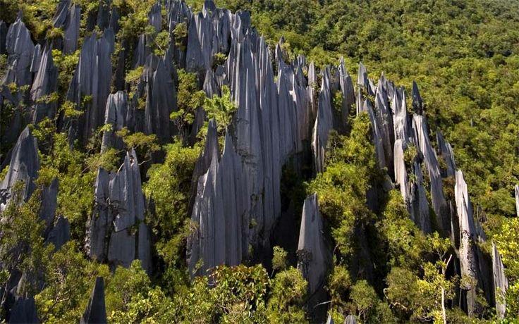The Pinnacles in het Gunung Mulu National Park zijn unieke rotspieken die dwars door regenwoud omhoog priemen. #rondreis #vakantie #borneo #maleisie #mulu #nationalpark #pinnacles #originalasia.nl
