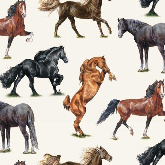 типы лошадей картинки выможете выбрать