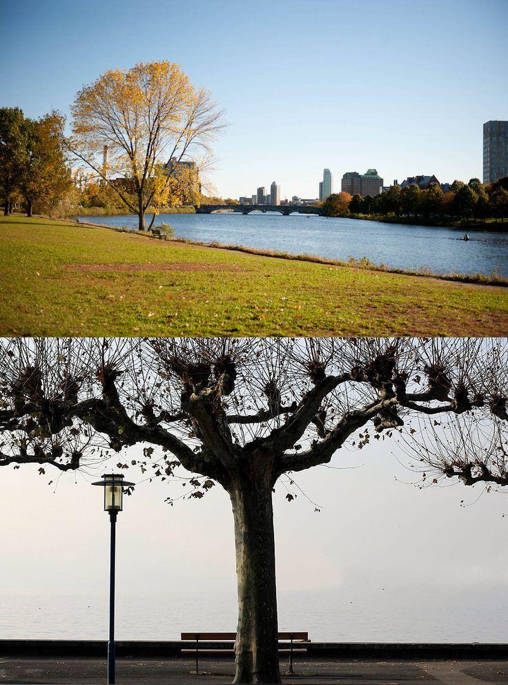 """Nel suo racconto """"L'altro"""", l'anziano Borges è seduto su una panchina a Cambridge, Massachusetts, e sta guardano il fiume Charles. E' il 1969.  Un giovane - ovvero il giovane Borges -  gli si siede accanto e i due iniziano a chiacchierare. Il giovane sostiene però che sono seduti su una panchina affacciata sul fiume Rodano, a Ginevra, nel 1918. Il dialogo tra il vecchio e il giovane Borges si fa difficile. Due panchine, il sogno di un'incontro impossibile, il tempo che passa…"""