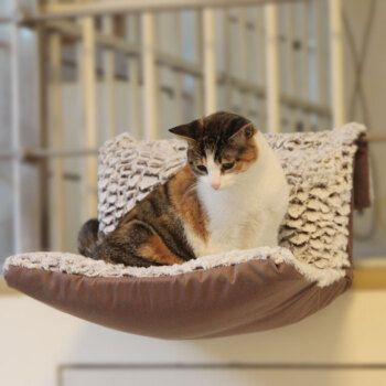 绒绒球猫吊床猫咪挂床猫窝猫用品猫跳台猫玩具 单独套子