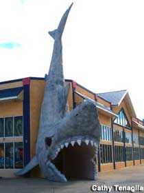 Giant Shark, Panama City Beach, Florida (There's a place similar to this just over the line in Alabama, from Pensacola, near Orange Beach, AL