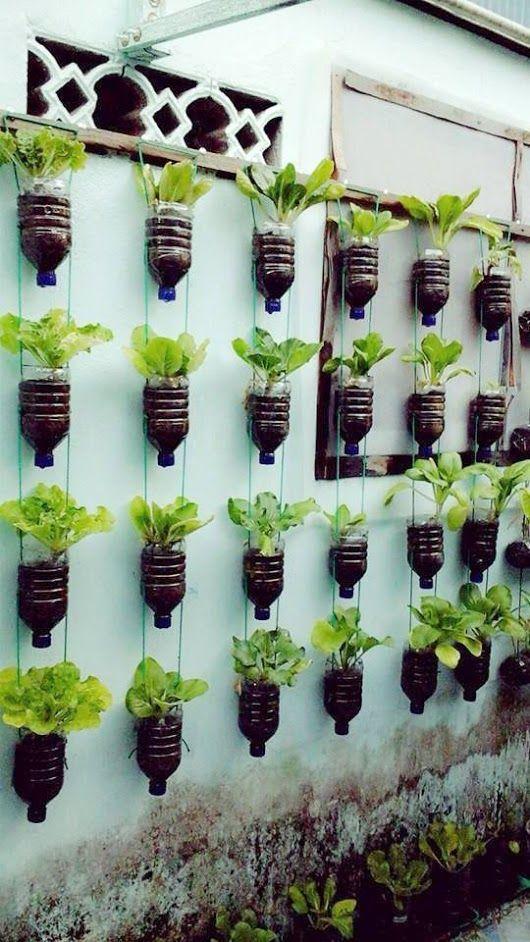 15+ Beautiful Hanging Plants Ideas Vertical garden diy