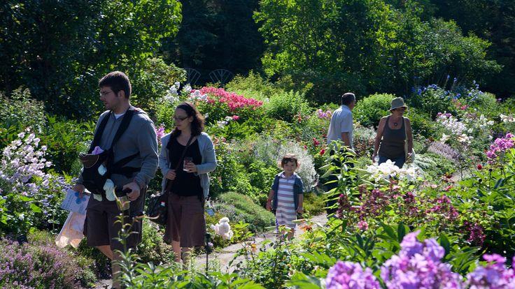 Les Jardins de Métis. Photo : Marie-Claude Hamel.