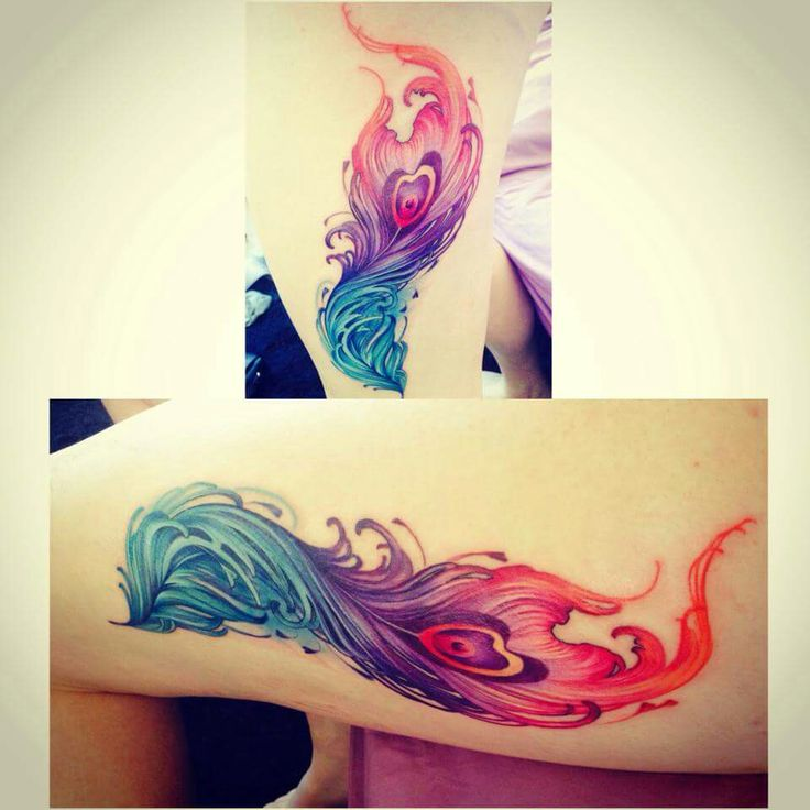 phoenix feather watercolour tattoo