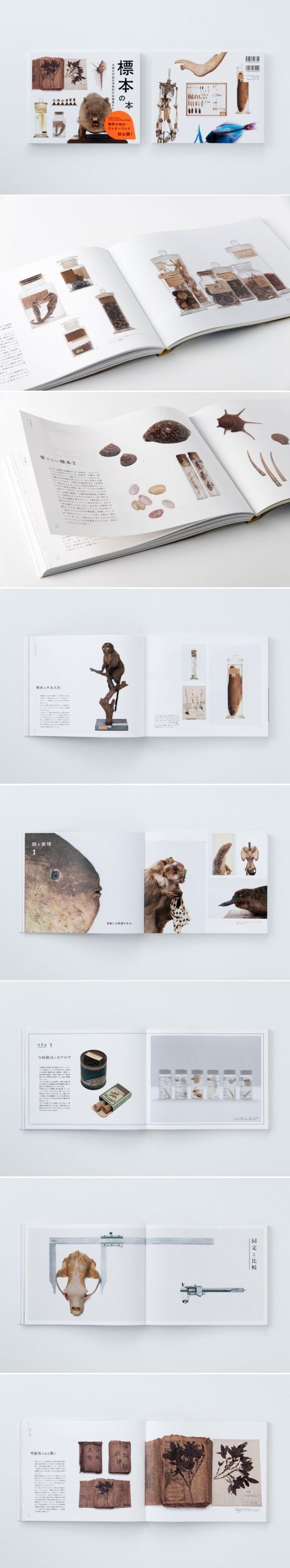 /// 標本の本 : UMA / design farm