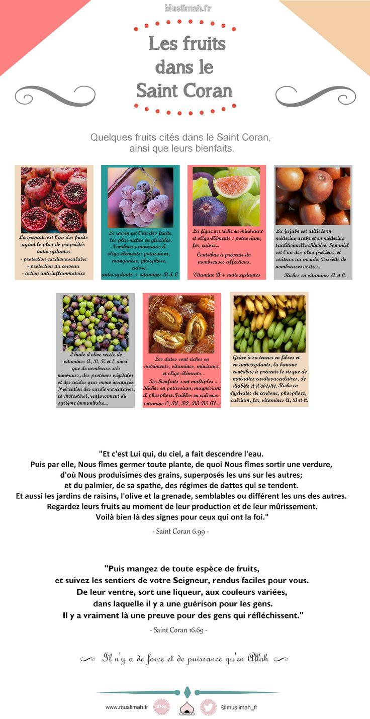 Les fruits dans le Saint Coran Muslimah.fr