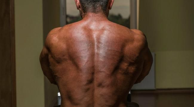 Back Workout: Master Your Mid-Back Construction | Muscle & Fitness---and remember ladies, you can do these workouts too to help build your back muscles!