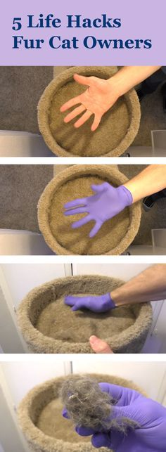 5 Life Hacks fur Cat Owners by Cole & Marmalade -- 1) Use rubber gloves to remove fur.  2) Marinate old cat toys in catnip.  3) Make a cat cave. 4) Cat food puzzle.  5) Whack a mouse!