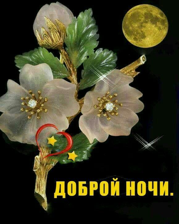 Скорпионом, картинки добрый вечер и спокойной ночи