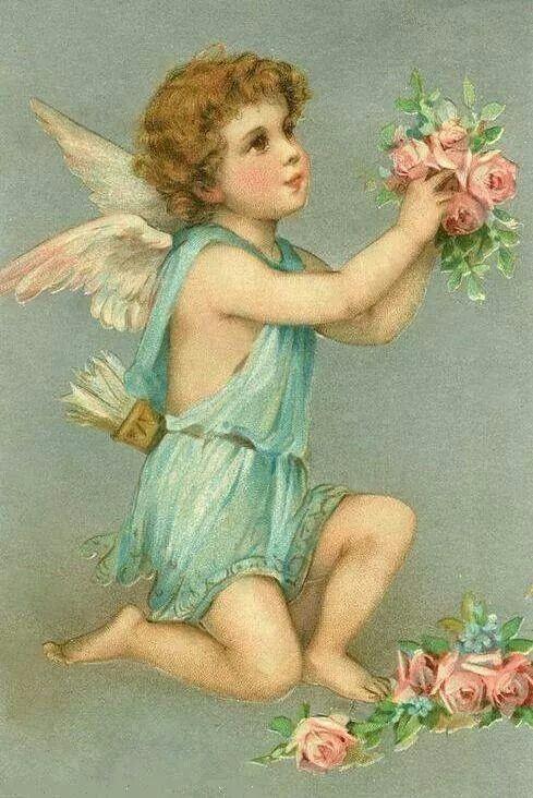 Precioso Angel!